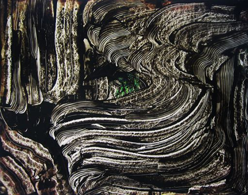 تصویر دوم از نمایشگاه رد در سیاهی - بهجت صدر