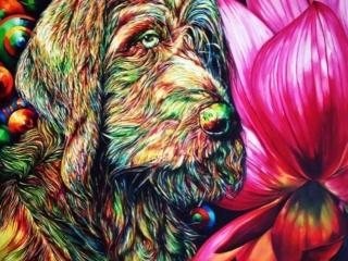 اثر سارا سهیلیفر در نمایشگاه گروهی نقاشی «سگ»   گالری شکوه